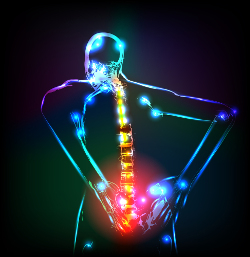 colourful x-ray of a person's back
